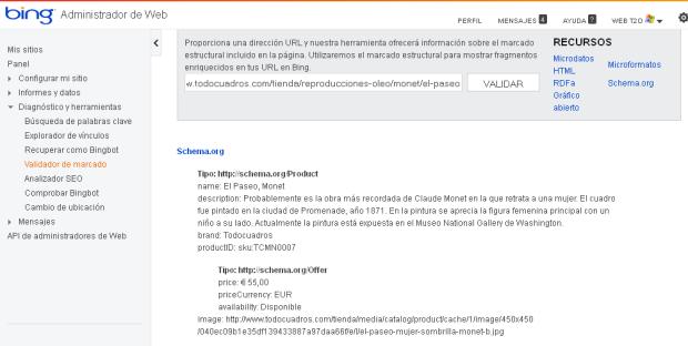 Datos Estructurados de Bing
